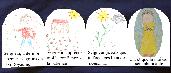 Image parabole semence
